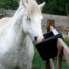 Для конюшни
