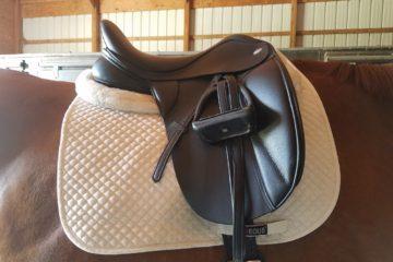 saddle1909